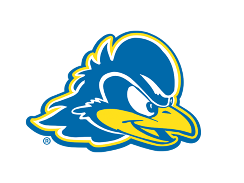 Delaware Blue Hens Account Manager